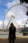 A giant observation wheel that towers over the Southbank.