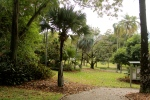 Brisbane City Botanic Gardens is a living museum of plant collections, displaying historical through to present day exotic and native plants. We were visited by a large Kookaburra which narrowly missed the top of our heads while approaching a gumtree.